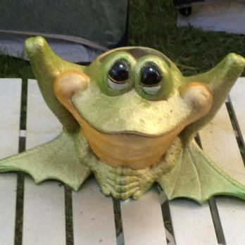ceramicfrog